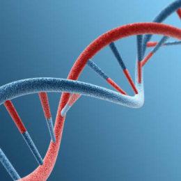 Who Owns CRISPR?
