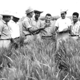 Agriculture — A Good News Story