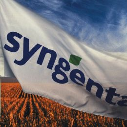 Chinese Competition Authority Green-Lights ChemChina's Acquisition of Syngenta