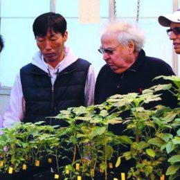Kansas State Makes Breakthrough in Glyphosate Resistance in Pigweeds