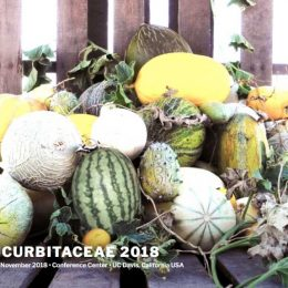 CUCURBITACEAE 2018 Seeks Abstract Submissions