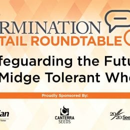Safeguarding the Future of Midge Tolerant Wheat: A Retail Roundtable Webinar & Podcast