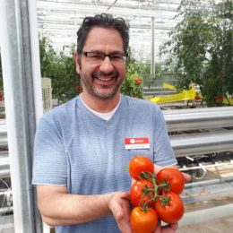 #NAPB2018: Here's What's New in Sweet Potatoes and Tomatoes